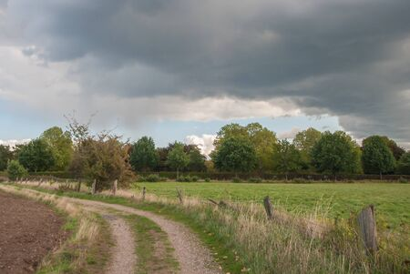 Dramatic rain clouds over a driveway to a grove on the field edge.