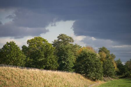 Grove behind a slope in the interplay of sun and clouds.