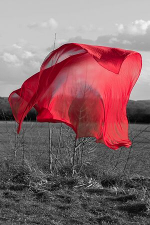 A red cloth hovers at the field edge. Reklamní fotografie