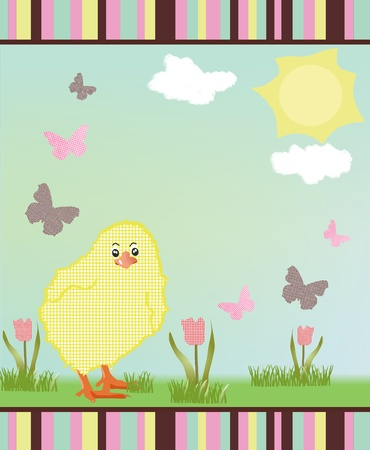 A little chick playing with butterflies on a sunny day with some tulips  photo