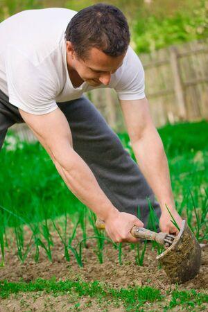 joven agricultor: j�venes agricultores que trabajan la tierra manualmente