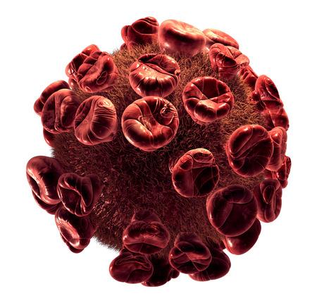 hepatitis a: Detailed 3d illustration of Virus isolated on white background