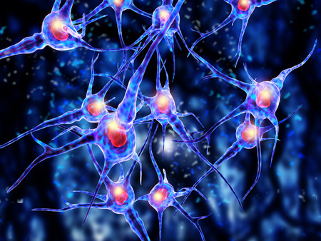 3d illustration of  nerve cells Archivio Fotografico