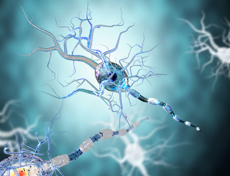 High quality 3d render of nerve cell isolated on white background Banque d'images