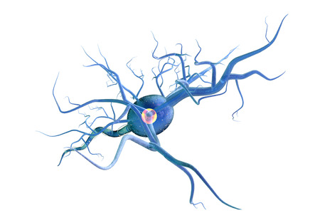 High quality 3d render of nerve cell isolated on white background Stockfoto