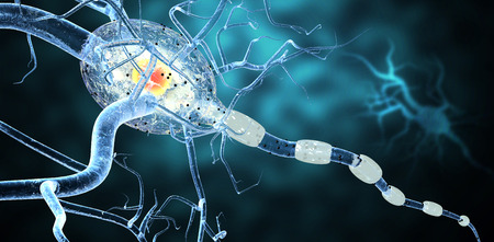 dystrophy: High quality 3d render of nerve cells, concept for Neurologic Diseases, tumors and brain surgery.