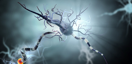 3d medical illustration, nerve cells. Neurons concept for Neurological Diseases, tumors and brain surgery. Archivio Fotografico