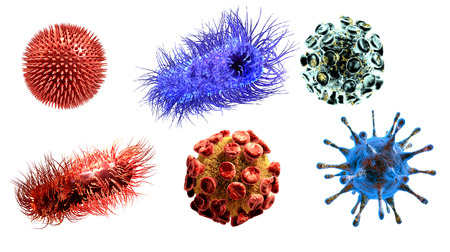 microbes: Detailed 3d medical illustration of viruses and bacteria  isolated on white background