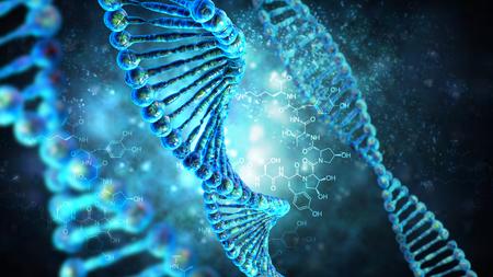 human evolution: High resolution 3d render of human dna string