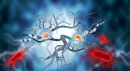 3d illustration of nerve cells, concept for Neurological Diseases, tumors and brain surgery. Banco de Imagens - 50958052
