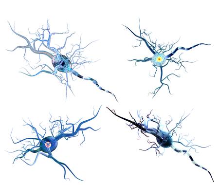 3d ilustracją komórek nerwowych, koncepcja dla choroby neurologiczne, nowotwory i chirurgii mózgu.