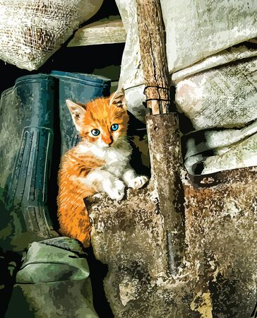 baby playing toy: Cute white and orange kitten sitting in old barn.  eps10.cat_01