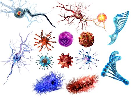 Detailed 3d medical illustration of viruses and bacteria isolated on white background