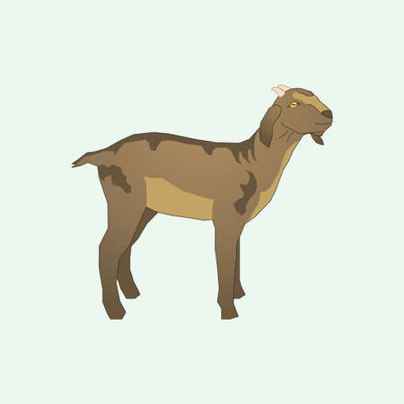 Illustration of a brown goat with a small horn