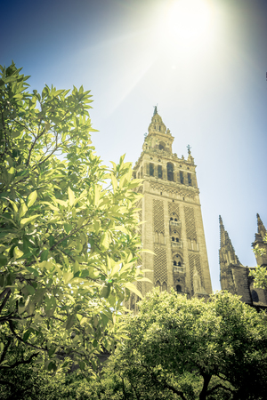 ceiling: Sunshine over the Giralda bell tower of the cathedral in Seville, Spain, Europe Stock Photo