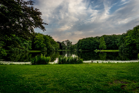 Blue sky over a lake and green grass at Haagse Bos, forest in The Hague, Netherlands, Europe