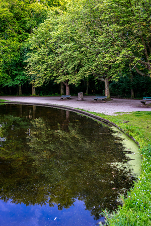 Wooden bench overlooking a water pond at Haagse Bos, forest in The Hague, Netherlands, Europe Stock Photo