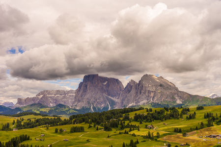 Alpe di Siusi, Seiser Alm with Sassolungo Langkofel Dolomite, a close up of a lush green field in a valley canyon
