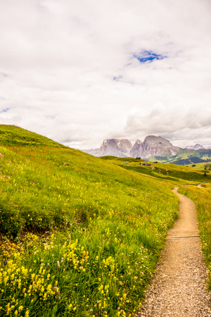 Italy, Alpe di Siusi, Seiser Alm with Sassolungo Langkofel Dolomite, a path with trees on the side of a mountain Stock Photo