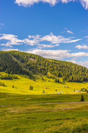 Alpe di Siusi, Seiser Alm with Sassolungo Langkofel Dolomite, a close up of a lush green field in a valley canyon panorama