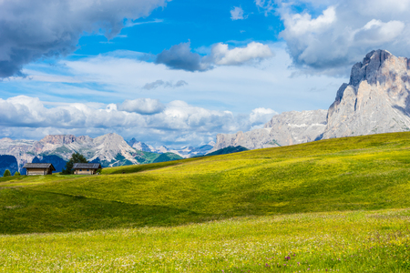 Italy, Alpe di Siusi, Seiser Alm with Sassolungo Langkofel Dolomite, a field with a mountain in the background 스톡 콘텐츠