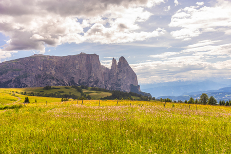 Italy, Alpe di Siusi, Seiser Alm with Sassolungo Langkofel Dolomite, a large green field with a mountain in the background 스톡 콘텐츠