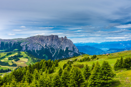Italy, Alpe di Siusi, Seiser Alm with Sassolungo Langkofel Dolomite, a view of a lush green hillside