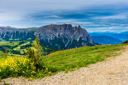 Italy, Alpe di Siusi, Seiser Alm with Sassolungo Langkofel Dolomite, a view of a large mountain in the background