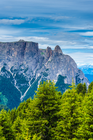 Italy, Alpe di Siusi, Seiser Alm with Sassolungo Langkofel Dolomite, a tree with a mountain in the background