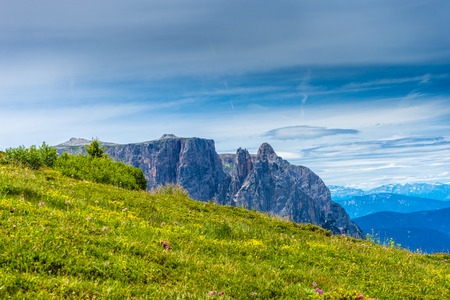 Italy, Alpe di Siusi, Seiser Alm with Sassolungo Langkofel Dolomite, a large mountain in the background