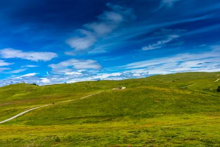 Alpe di Siusi, Seiser Alm with Sassolungo Langkofel Dolomite, a walking winding path in a lush green field