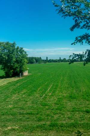 Europe, Italy, La Spezia to Kasltelruth train, a large green field with trees in the background