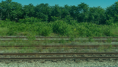 Europe, Italy, La Spezia to Kasltelruth train, a large long train on a train track with trees in the background 写真素材