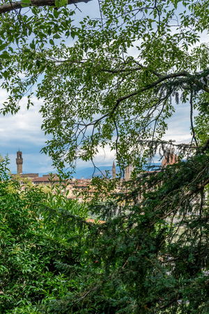 Italy,Florence, leaves of a tree with cityscape Stock Photo