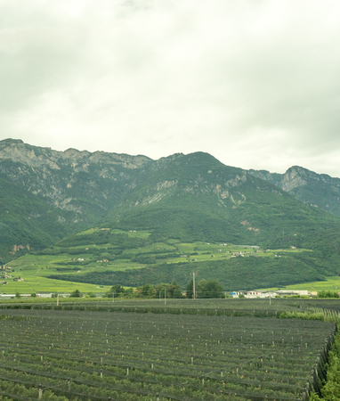 Europe, Italy, La Spezia to Kasltelruth train, a field with a mountain in the background