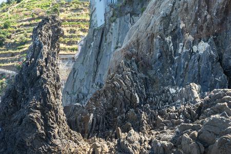 Europe, Italy, Cinque Terre,Riomaggiore, a close up of a rock