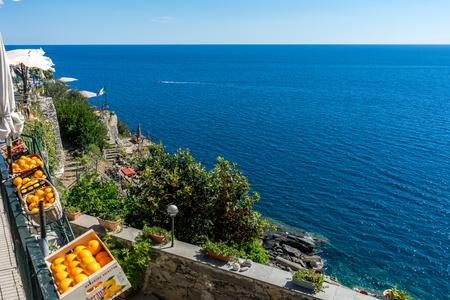 Vernazza, Cinque Terre, Italy - 26 June 2018: Oranges against the blue ocean at Vernazza, Cinque Terre, Italy