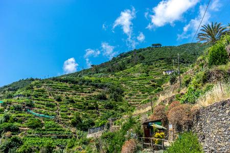 Vernazza, Cinque Terre, Italy - 27 June 2018: The Cinque Terre trekking check point at Vernazza, Cinque Terre, Italy Redactioneel