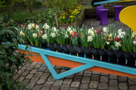 Flower garden, Netherlands, Europe, a group of colorful flowers sitting on a bench Stock fotó
