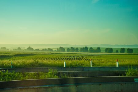 Germany, Frankfurt, Sunrise, Outkirts, a close up of a green field