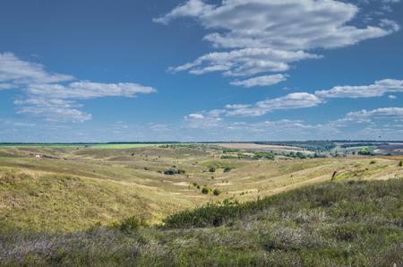 expanse: UKrainian summer landscape with wheat field.
