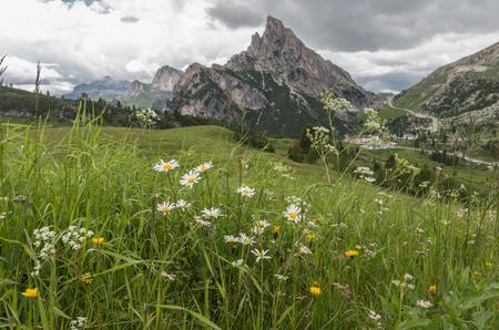 Dolomites alps, Mountain, Summer valley, Italy Stock Photo