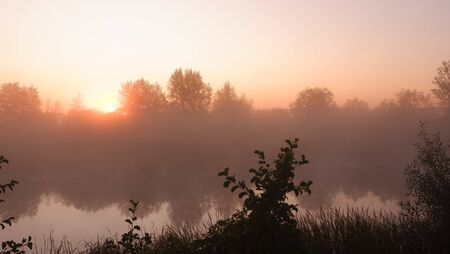 Beautiful summer morning with sun rays and a fog from the river, misty down and sunrise 写真素材