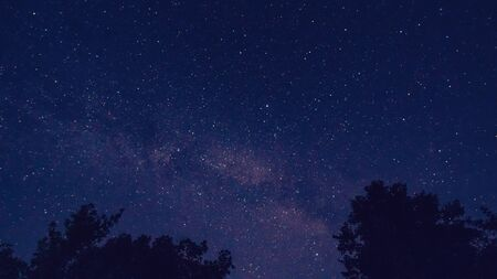 Milky way over redwood trees, near nice landscape affect the viewer's imagination, dense virgin forests on the slopes contribute to conceal the traces of civilization
