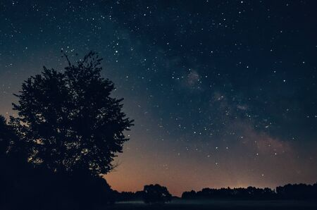 Beautiful night sky over forest landscape, Milky Way and trees Stock Photo
