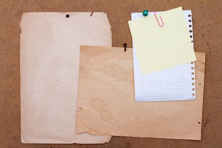 plywood: Sheets of paper pinned to the plywood.