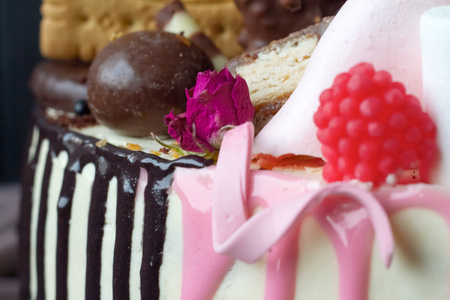 Closeup of black and white chocolate sponge cake with pink and chocolate decoration against the background of fabric drapery Stock Photo