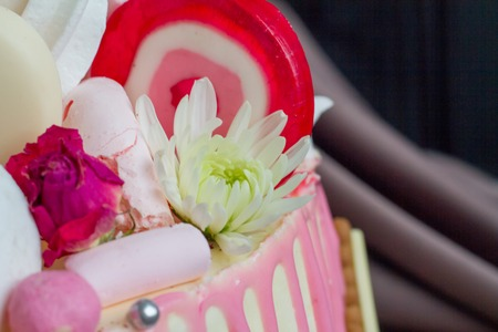 Closeup of black and white chocolate sponge cake with pink and chocolate decoration against the background of fabric drapery 写真素材
