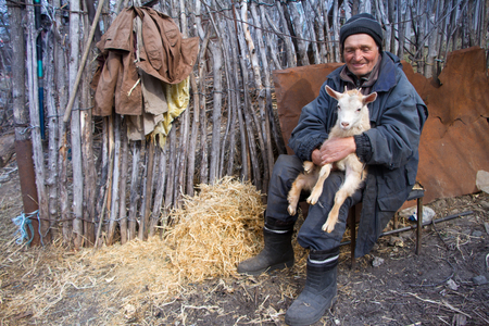 A very old man in messy clothes is sitting on a stool in the yard of an old farm and holding a white goat on his hands, life on an old farm