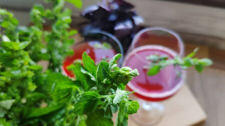 Top view of two glasses with a red refreshing cocktail decorated with mint leaves on a background of bunches of mint and purple basil, selective focus